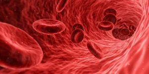 blood movement